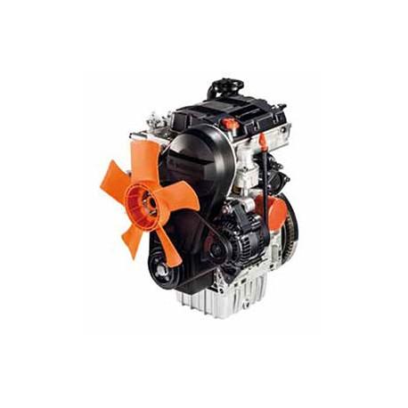 Motore Lombardini LDW 502