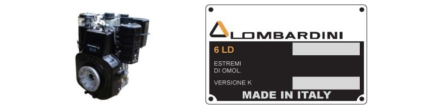 Ricambi Motore 6LD